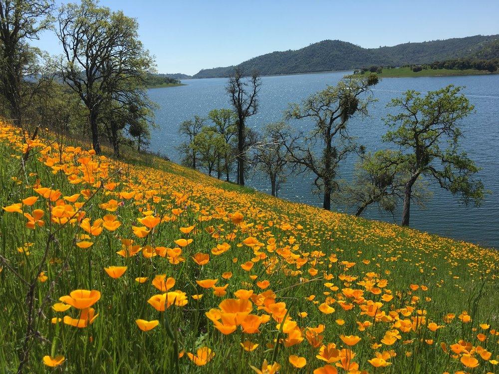 Melones Lake - Angels Creek Trail - Easter Day 2018