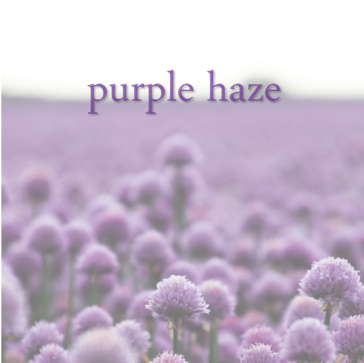 01-Purple Haze.png