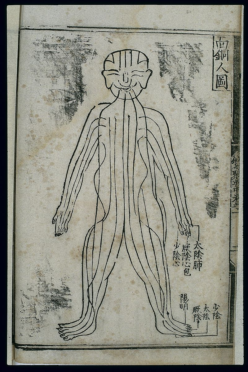 Bronze_Man_acupuncture_figurine,_front_view,_Chinese_woodcut_Wellcome_L0037803.jpg
