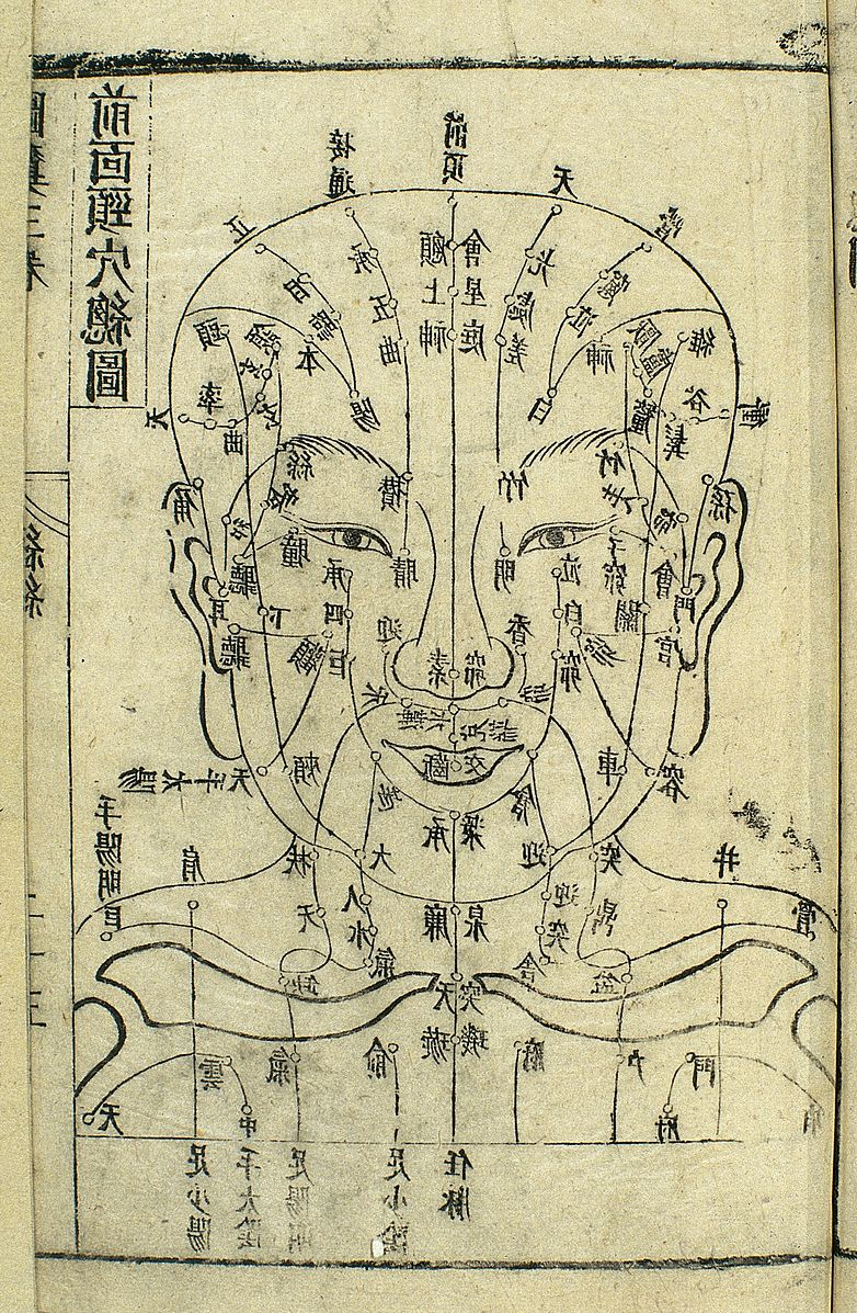 Acupuncture_chart_of_front_of_head,_17th_C._Chinese_woodcut_Wellcome_L0034707.jpg
