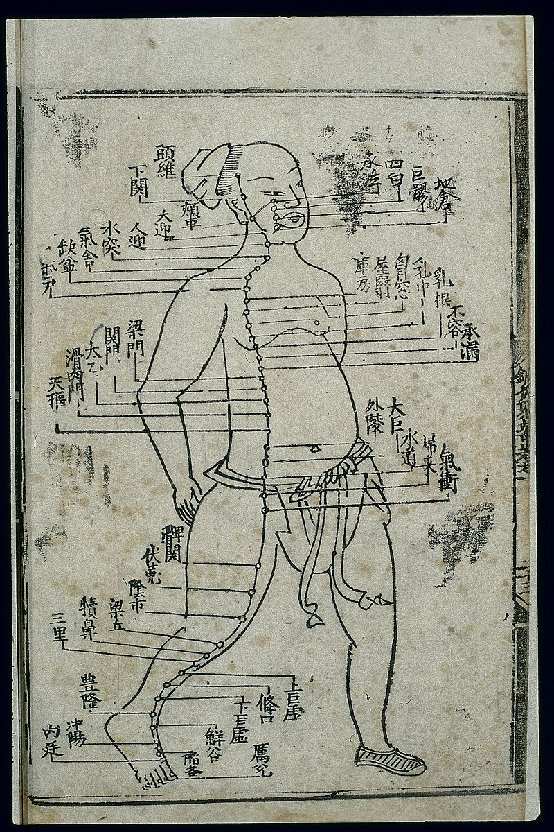 Acupuncture_chart,_stomach_channel_of_foot_yangming,_Chinese_Wellcome_L0037812.jpg