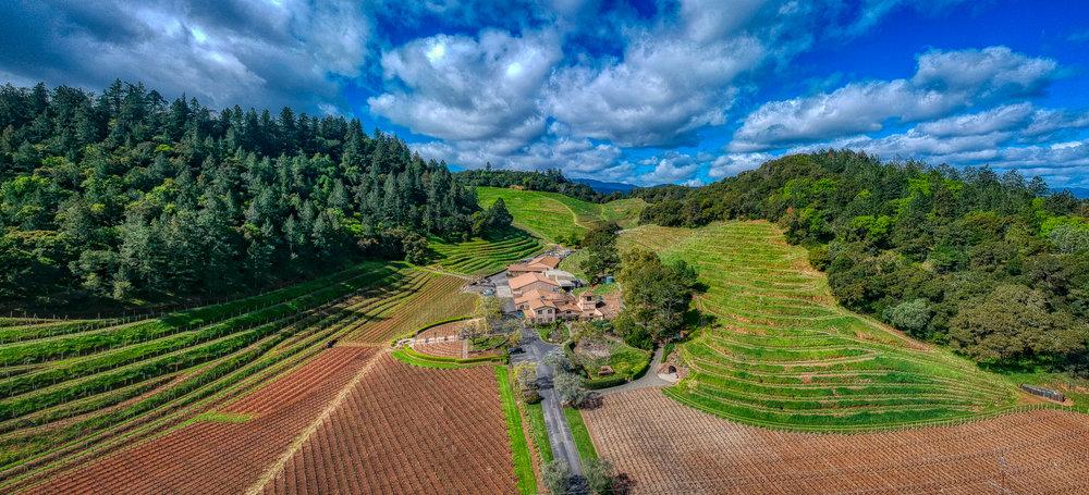 Pine Ridge Winery