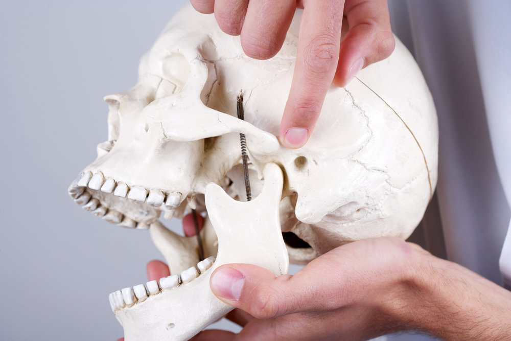 (TMJ) DYSFUNCTION - Chiropractors are trained to correct problems due to poor joint mechanics and joint misalignments. Chiropractic treatment of the TMJ focuses on joint mobilizations, adjustments and soft tissue techniques applied directly to the TMJ and its surrounding musculature.In most cases,TMJ Dysfunction is influenced or exacerbated by poor joint mechanics, and tight musculature in the upper back and neck.Therefore, of equal importance, Chiropractic care also focuses on corrections to the mechanics and positioning of the joints in the upper back and neck to relieve symptoms associated with TMJ disorders.When these treatments are employed, motion of your upper back, neck and jaw joints can improve and your symptoms such as: ear pain, jaw locking, headaches, and neck pain can be reduced or eliminated.Chiropractic Care, Therapeutic Ultrasound Acupuncture, Co-Managing Care With Dental Professionals