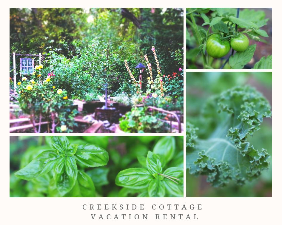 Creekside Cottage Vacation Rental.png