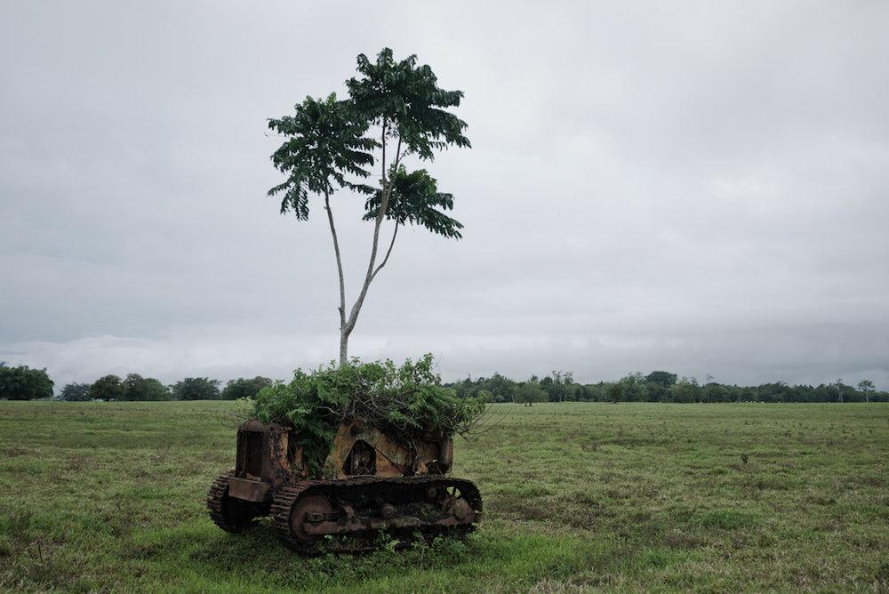 Vanuatu: un arcipelago di 82 isole, abitato da poco piu' di 200 mila persone, purtroppo noto alle cronache solo per cicloni e perchè avamposto del cambiamento climatico che rischia di rimanere sommerso dall'Oceano. Vittime del blackbirding, il rapimento di uomini e donne ridotti in schiavitu' in Australia, poi colonizzati da Inglesi e Francesi, quindi occupati dagli Stati Uniti nella seconda guerra mondiale con basi militari, gli abitanti di Vanuatu sono riusciti negli anni a mantenere viva e a difendere una cultura unica e preziosa.