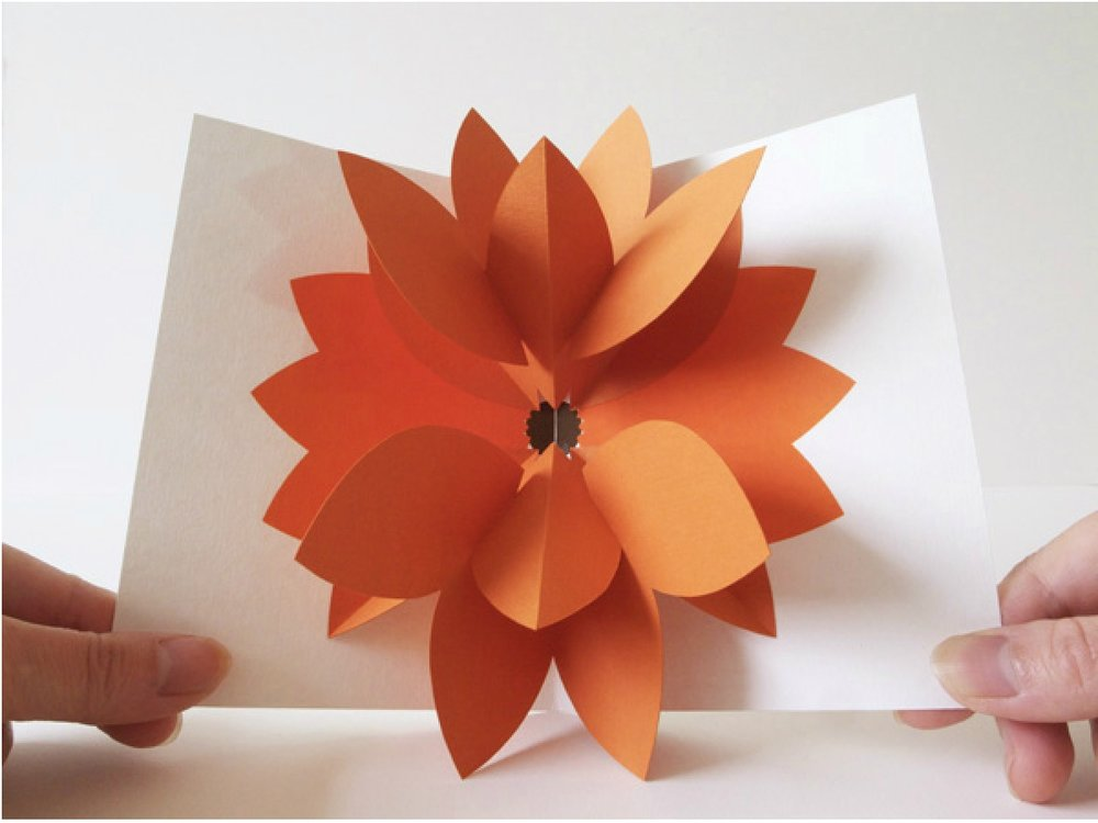 Chisato Tamabayashi - http://www.chisatotamabayashi.com/   @chisatotamabayashiJapanese paper artist, featuring hand-cut pop-up card and books.