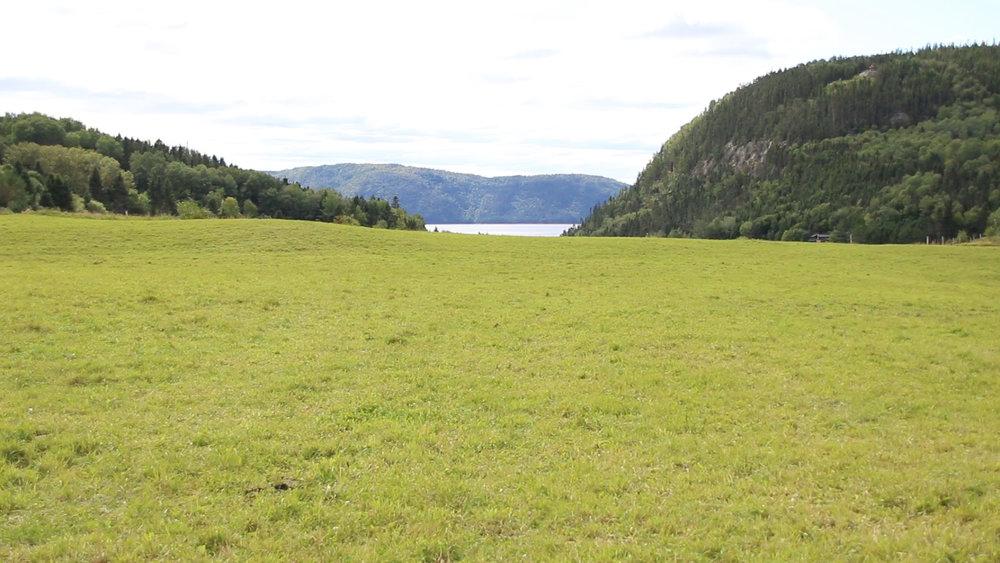 fjord_view1.jpg