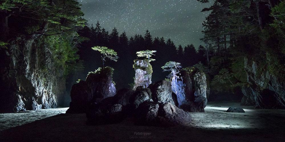 midnight-bonsai-san-josef-bay-gavin-hardcastle.jpg