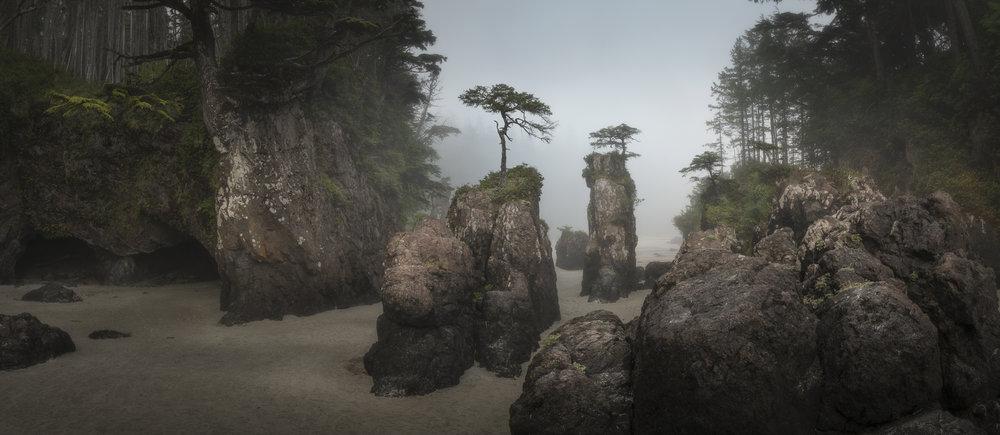 Sea stacks, San Josef bay, Vancouver Island, British Columbia, Canada