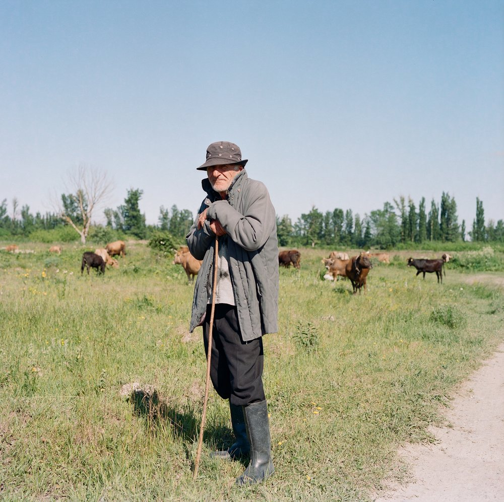 A cattle herder in Shida Kartli, Georgia.
