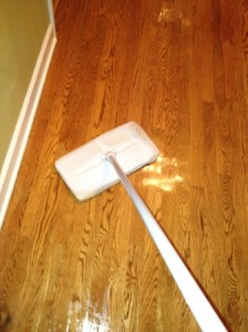 Natural Green Cleaning Mopping