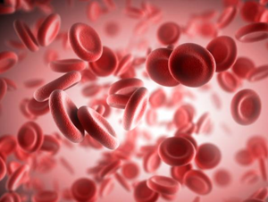 blood cells.png