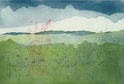 Johanne Foss: Blera sommer markblomster. Italien, 2009. Ætsning og akvatinte