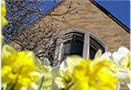 spring church flowers