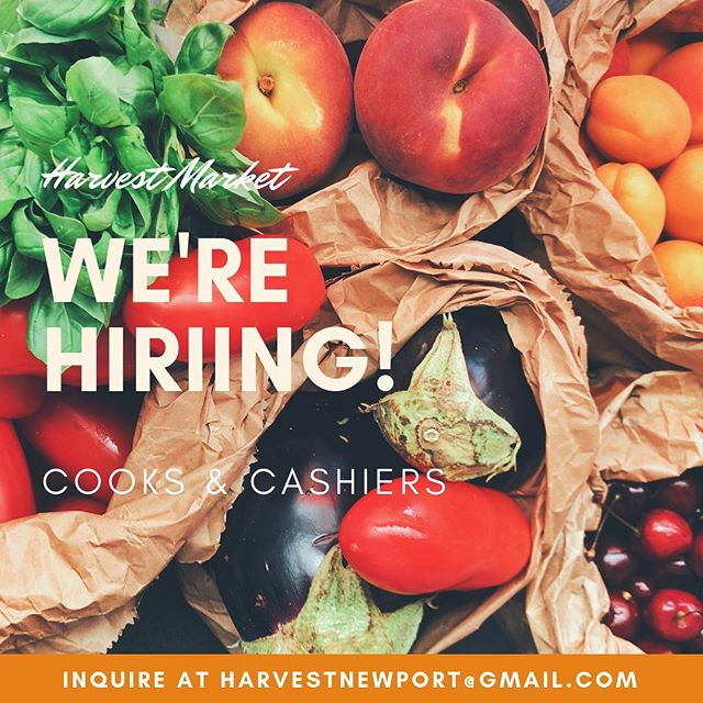 Join our team of dedicated, hard working, awesome humans! Immerse yourself in the Newport community and learn about sustainability, supporting local, cooking and much more!  Email harvestnewport@Gmail.com for more information! 🥯🥑🥖🍅🥐🥕