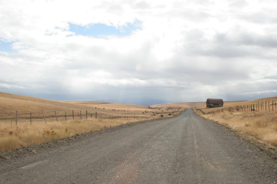 Zumwalt Prairie in Oregon: leading lines in the road and fences.