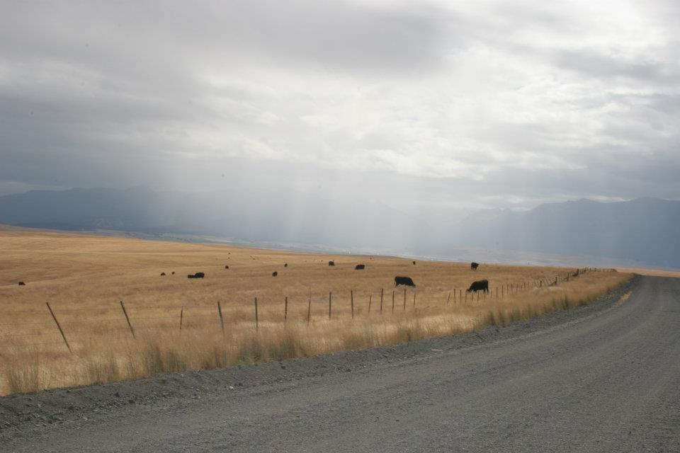 Leading lines in the sunrays, fences, and gravel road.