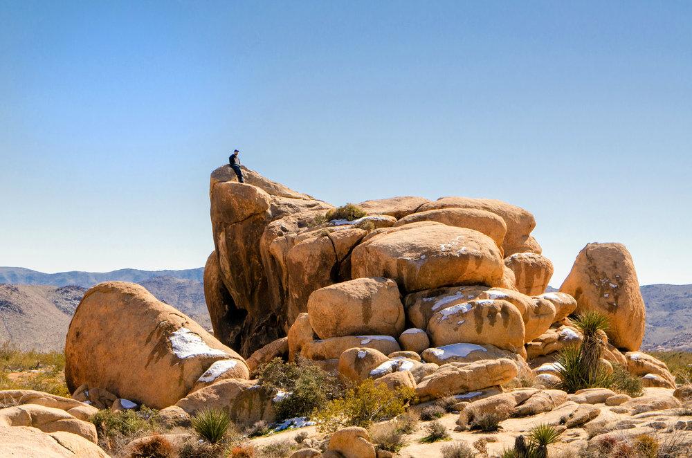Jumbo Rocks, Joshua National Tree, CA