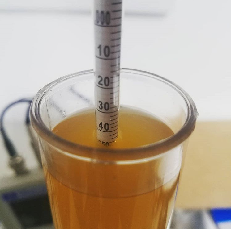 Pale Ale - Gravity Reading.png
