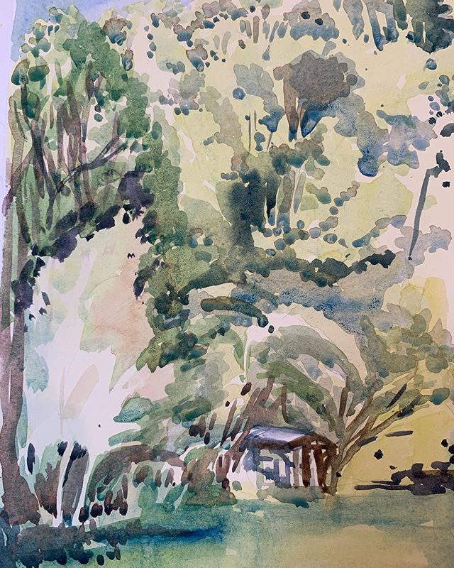 I painted this one at my friend Jude's place - this is the view from her porch!It will be on show in the upcoming exhibition NEW NOW @robingibsongallery opening 23rd Feb- kicking off the year for RGG