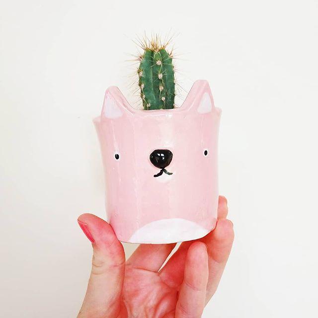 These ceramic pieces are paw-sitively purrrrrfect 🐱  @wrenandwilson  #cermanics #catpuns #art #pinkart #plants #cactus #crzylvrs #badjokes #artwork #artists #dailyart