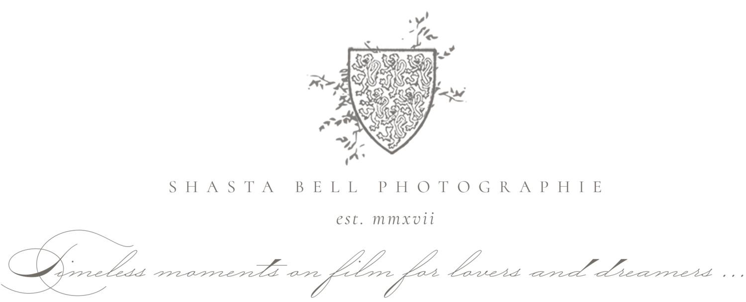 Shasta Bell Photographie: Minnesota & Destination Fine Art Wedding Photography