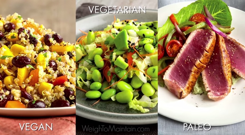 fixate vegan vegetarian paleo weigh to maintain