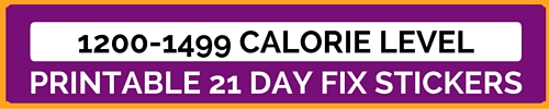 21 day fix, beachbody, erin condren planner stickers, jacqui grimes