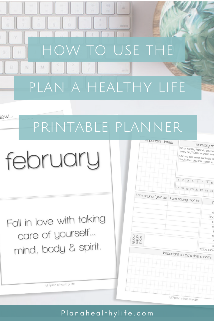 How to Use the Plan a Healthy Life Planner