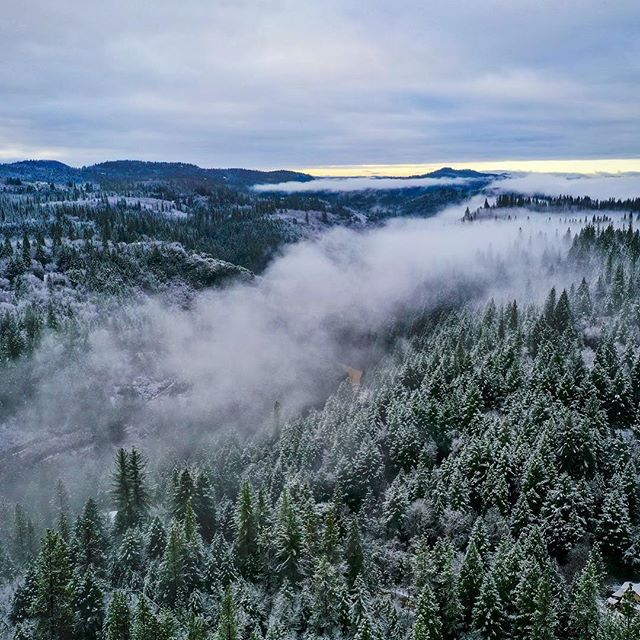 The beautiful snowy hills of grass valley California #grassvalley #tahoe