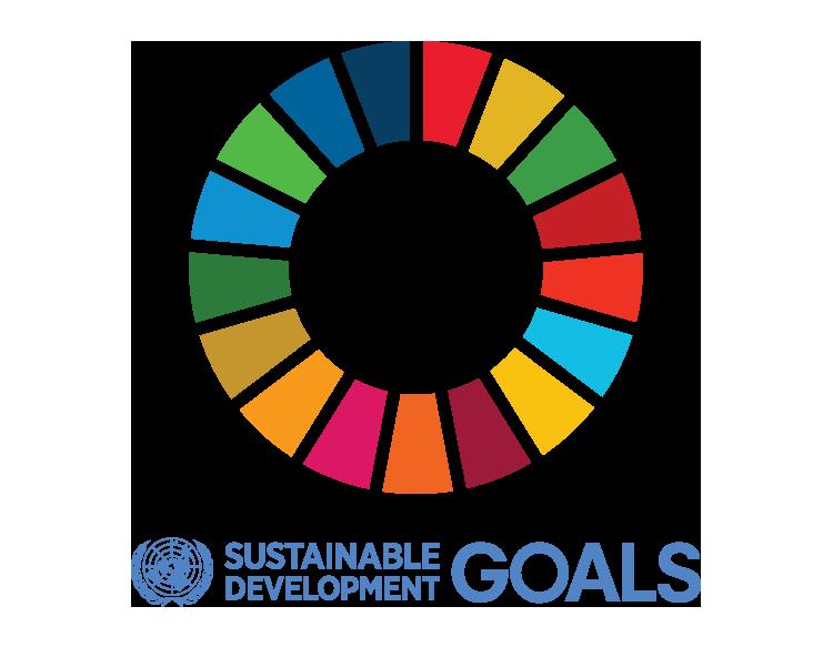 SDG-logo-transparent-ENG.png