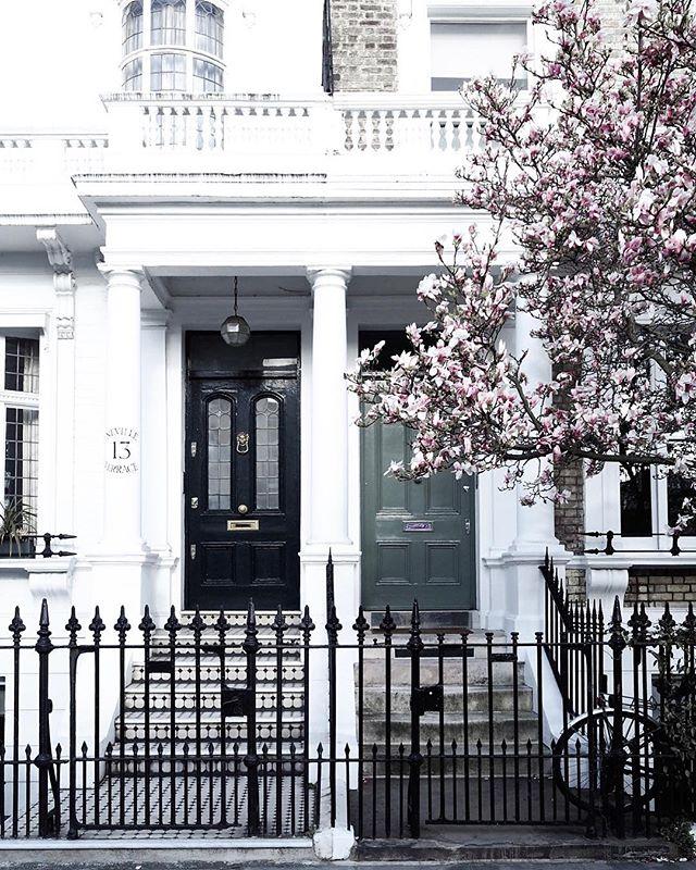 In true Friends style, the one with the double door shot, magnolia and bike! Did I miss anything? Happy Tuesday lovelies ♡ oh and thank you @littlelondonwhispers for the tip off re beautiful magnolia ♡ . . . . . #explorelondon #prettycities #londonlove #tlpicks #living_europe #darlingplaces #mycityloves #travelerinlondon #iamatraveler #worldinbloom #thisismycommunity #mytinyatlas #exploremore #tlpicks #verytandc #londongram #sheexplores #igotlondonskills #visitlondon #myseasonalstories #gramminginlondon #springinlondon #londonbylondoners #super_europe @its_so_london @out_in_london @esgolondon