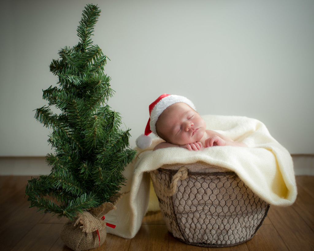 San Jose Newborn Photography