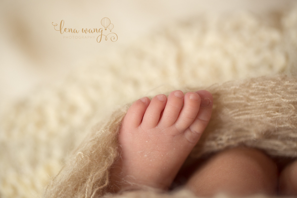 Los Gatos Santa Cruz San Jose San Francisco Bay Area South Bay Newborn Baby Photography