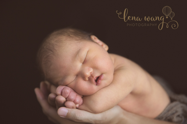 Palo Alto San Francisco Bay Area Newborn Baby Boy Portrait Photography Los Gatos (4)