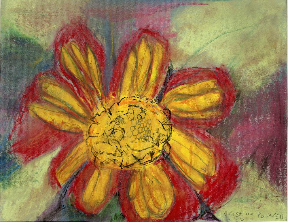 The Sunset Flower