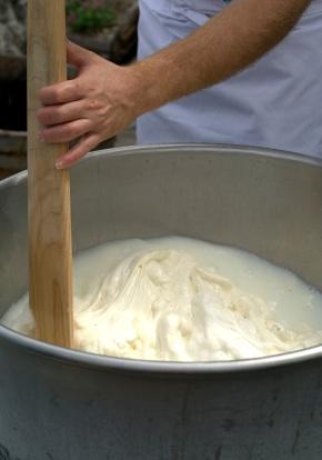 makingmozzarella