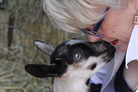 My mother the goat whisperer.