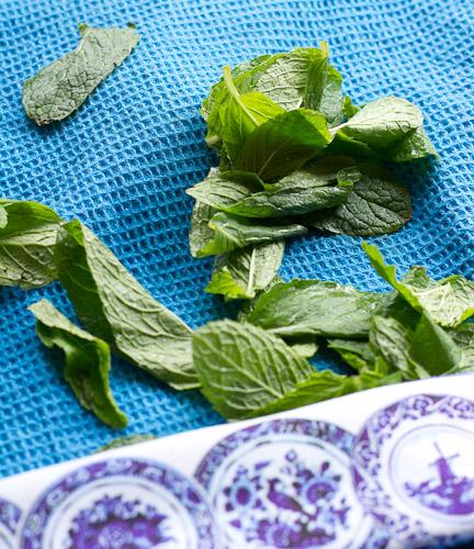 Mint Leaves (1 of 1)