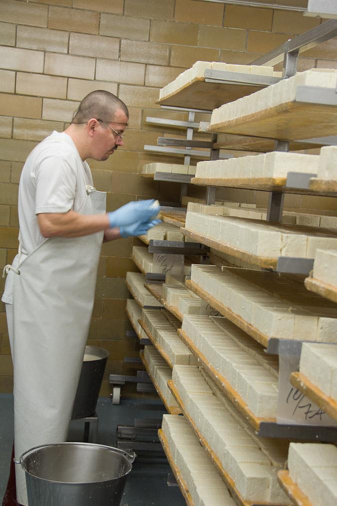 Washing Limburger - at Chalet Cheese