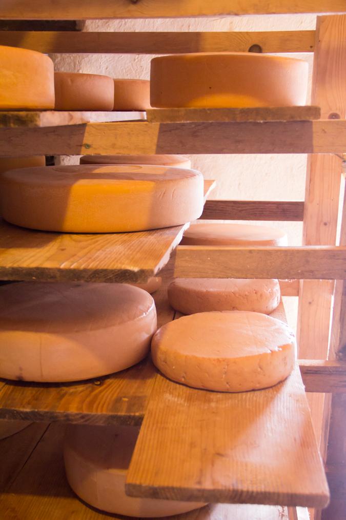 Dingle-Cheese-Alpine-Shelve-2-1-of-1-1.jpg