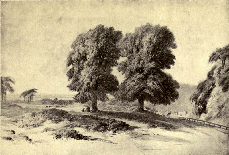 1800s The Gibbet Trees, North End.jpg