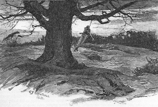 1881 Gibbet Elm.jpg