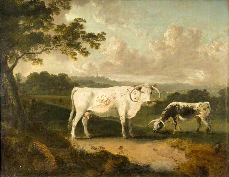 Lord Mansfield's long horned cattle at Kenwood, 1797, by Julius Caesar Ibbetson