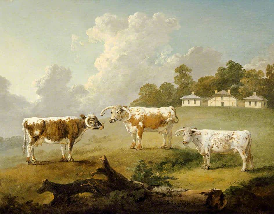 Three Long Horned Cattle at Kenwood, 1797, by Julius Caesar Ibbetson