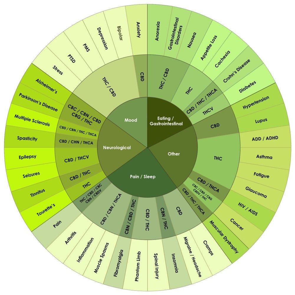 Cannabinoids-1024x1024.jpeg