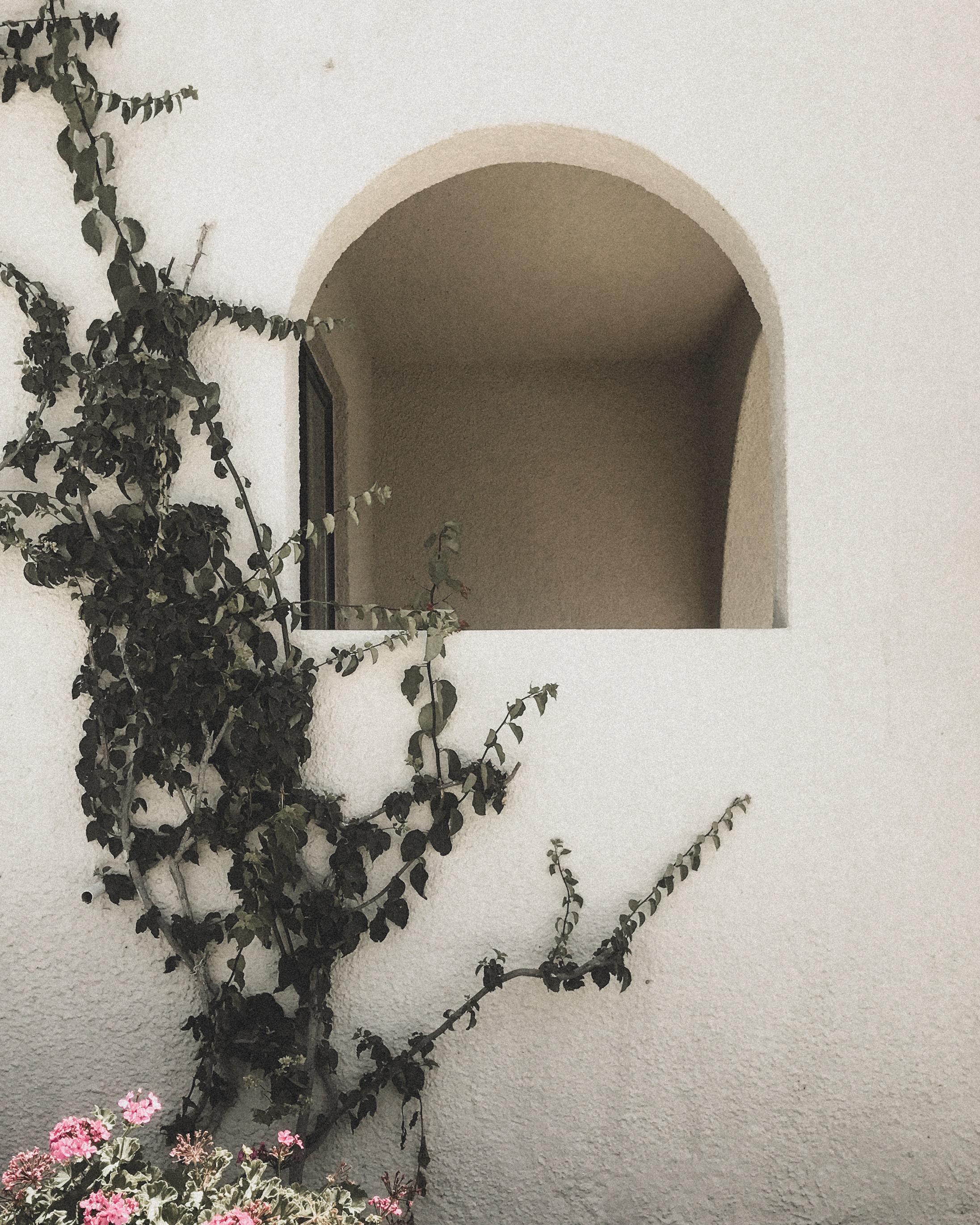 Archway with Foliage Hotel, Kos, Greece