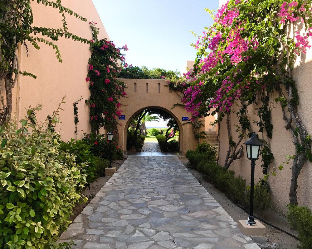 PB-Beach-Hotel-Gardens-1-of-1.jpg