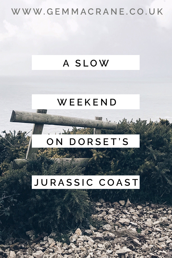 Jurassic Coast Pin Graphic.png