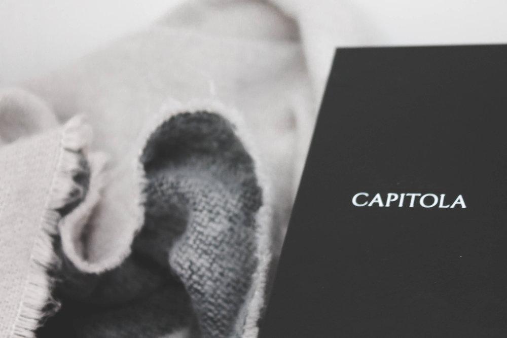 Capitola Velvet Grey2x3-6462.jpg